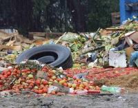 Metade da comida do mundo vai parar no lixo