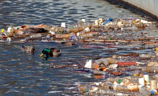 Cerca de 95% dos córregos de SP estão poluídos