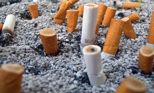 Os malefícios do descarte incorreto  de bitucas de cigarro