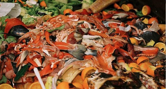 """Desperdício de comida é """"enorme"""" problema econômico, adverte o G20"""