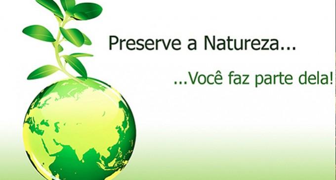 A importância de preservar a natureza