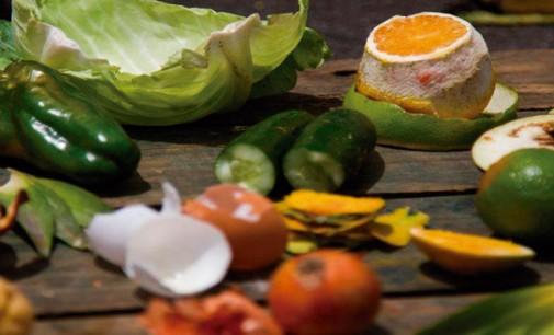 Confira dicas para tornar sua cozinha mais sustentável