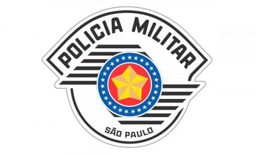 POLÍCIA MILITAR NO COMBATE À CRIMINALIDADE