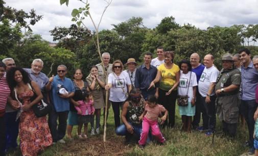 Plantio de 463 árvores nativas no Pq. Jardim da Conquista