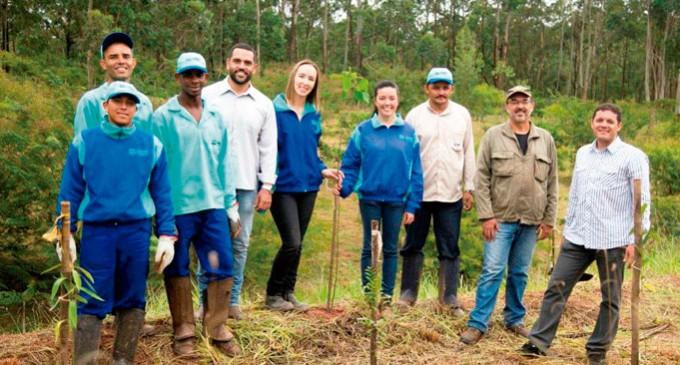 EcoUrbis participa de ação global de plantio de árvores
