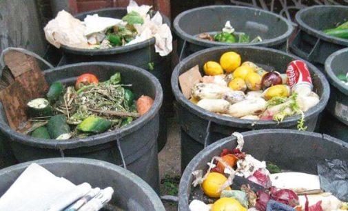 O desperdício de alimentos