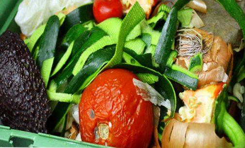 Ministério do Meio Ambiente lança cartilha sobre descarte correto de lixo
