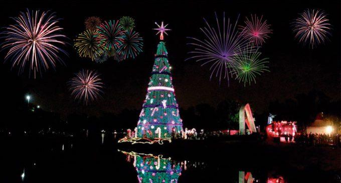 Tradicional árvore de Natal no Parque Ibirapuera