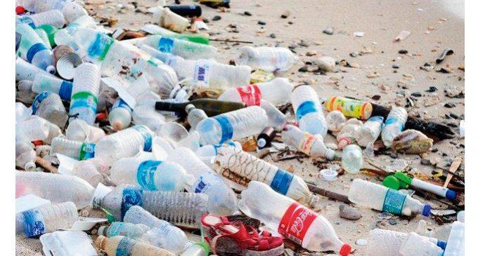 8 formas de reduzir o lixo jogado no meio ambiente