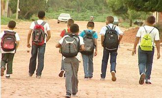 Crianças do Jardim Marilu andam quilômetros pra estudar